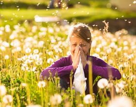 Alergije – kako se jih znebiti